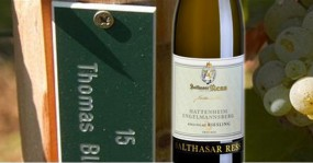 Hattenheimer Engelmannsberg - Rebstockpacht 5 Jahre